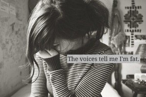 The-voices.1-300x200